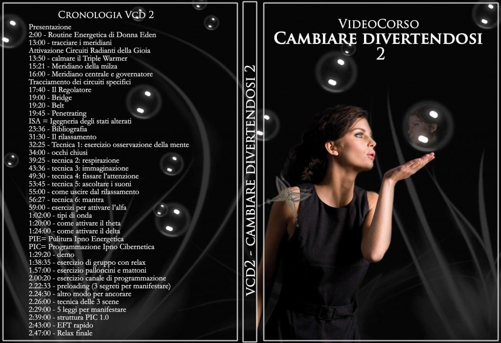 VCD2 copertina